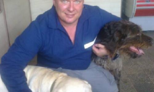 Киевские догхантеры отчитались о визите в Одессу: минус 45-50 собак