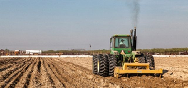 Украинцам ужесточили правила уплаты налога на землю