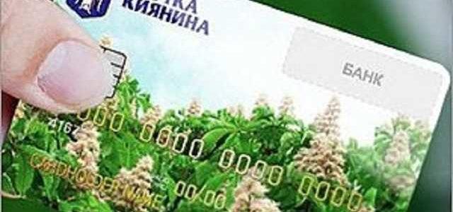 Почему закрывают проект «Карточка киевлянина» и кому не выгоден инструмент борьбы с коррупцией?